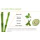 Gel apaisant Aloe Vera et Beurre de karité Herbal Aloe - Herbalife