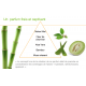 Pain de Savon pour le corps Herbal Aloe - Herbalife