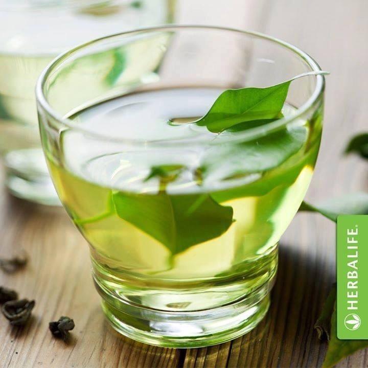 Boisson instantanée brûle-graisse à base de thé Herbalife